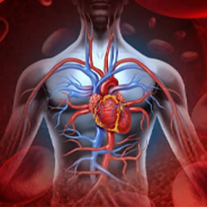 Dieta para Hipertensión arterial