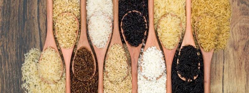 El arroz hace engordar?